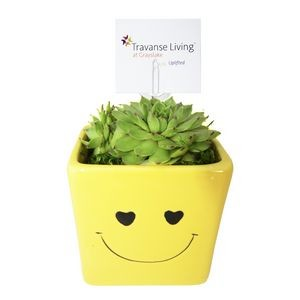 Assorted Succulents in Ceramic Smiley Face Pot